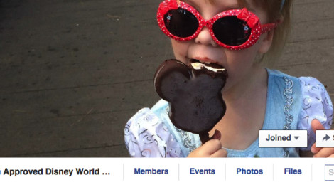 The Mom Approved Walt Disney World Trip Planning Group