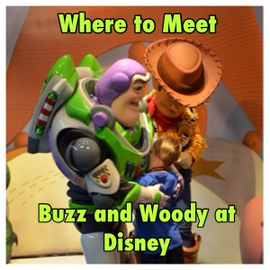 where to meet woody and buzz at Disney World