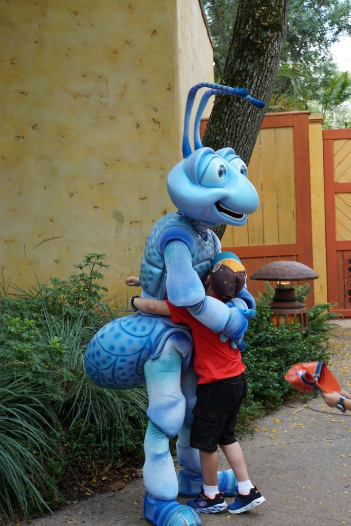 Flik - Animal Kingdom