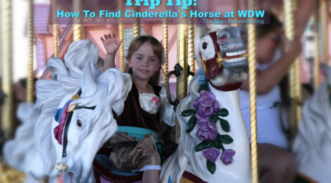 Mom Approved Trip Tip: How To Find Cinderella's Horse In Magic Kingdom